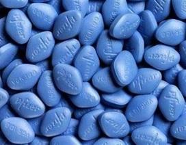Thuốc Viagra- hy vọng mới cho bệnh nhân ung thư máu
