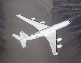 """Máy bay """"Ngày tận thế"""" của Mỹ đâm trúng chim, thiệt hại 2 triệu USD"""