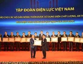 EVN đón nhận Huân chương Lao động hạng nhất vì những đóng góp cho chương trình xây dựng nông thôn mới