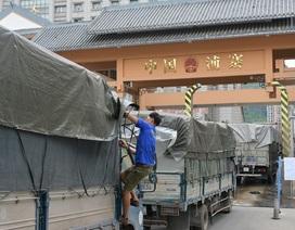 """Ùn ứ nông sản ở cửa khẩu: Đừng chỉ nghĩ tại Trung Quốc """"khó tính"""""""