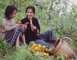 """Cuộc sống bình yên, không cần đến tiền của cô gái Đắk Lắk """"bỏ phố về rừng"""""""