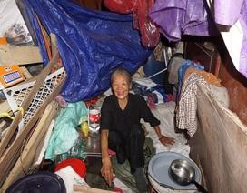 Cuộc sống cơ cực của cụ bà 73 tuổi nhặt ve chai dưới chân cầu Long Biên