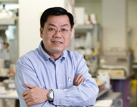 Giáo sư gốc Việt đầu tiên được bầu làm Viện sĩ Viện hàn lâm y học Úc