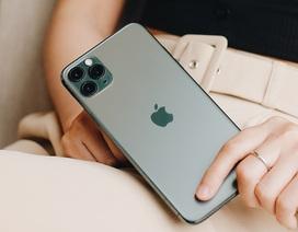 iPhone 11 chính hãng bán tại Việt Nam vào ngày 1/11, giá rẻ nhất từ 21,99 triệu đồng