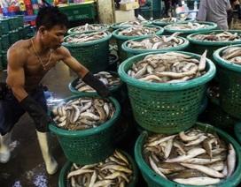 Mỹ bất ngờ đình chỉ ưu đãi thương mại với Thái Lan trị giá 1,3 tỷ USD
