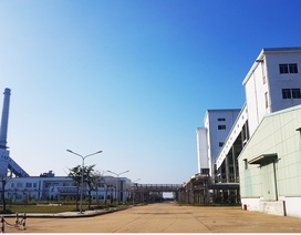 Quảng Nam công khai 22 doanh nghiệp nợ hơn 125 tỷ đồng tiền thuế
