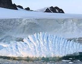 Băng ở Nam Cực đang mỏng dần ở mức độ chưa từng thấy