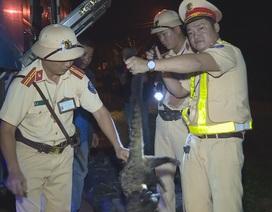 Bắt quả tang xe khách vận chuyển 70 cá thể động vật rừng đi TP.Hồ Chí Minh tiêu thụ