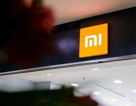 Xiaomi lần đầu tiên cán mốc 10% thị phần di động tại Việt Nam