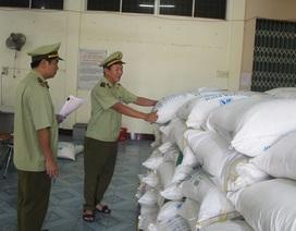 Phú Yên: Tạm giữ 30 tấn đường không rõ nguồn gốc xuất xứ