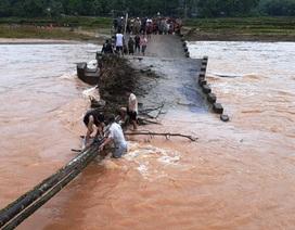 Thót tim cảnh người dân ghép cây làm cầu tạm vượt sông trong lũ