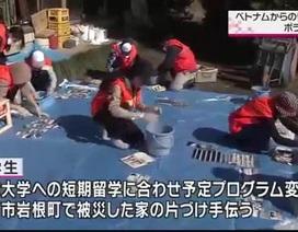 Hỗ trợ dân vùng thiên tai, du học sinh Việt được khen ngợi trên truyền hình Nhật Bản