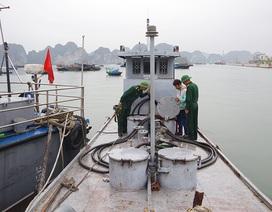Biên phòng bắt giữ tàu chở 3.000 lít dầu DO không rõ nguồn gốc