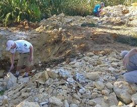 Quái vật biển 150 triệu năm tuổi được phát hiện ở Ba Lan