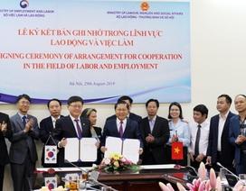 Tăng cường hợp tác lao động việc làm giữa Việt Nam - Hàn Quốc