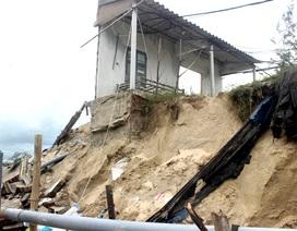Tan hoang bờ biển ở xã đảo Tam Hải