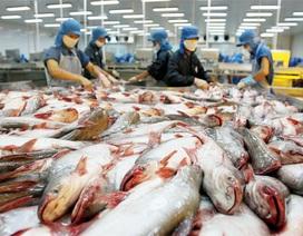 """Cá da trơn Việt Nam """"rộng đường"""" vào Mỹ"""