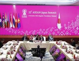 Nhật Bản ủng hộ duy trì hòa bình và ổn định ở Biển Đông