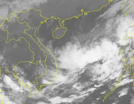 Áp thấp nhiệt đới sẽ mạnh lên thành bão và quay lại đất liền Việt Nam?