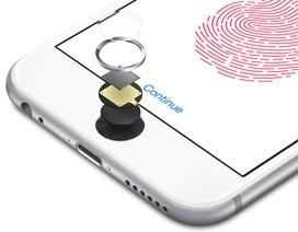 """iPhone """"giá rẻ"""" với Touch ID được dự đoán sẽ tạo ra cơn sốt trong năm 2020"""