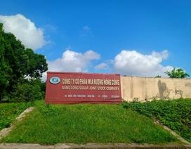Vụ công ty không chịu trả nợ: Người trồng mía cầu cứu Chủ tịch tỉnh