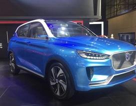 """Lại thêm 7 ô tô Trung Quốc chứa """"bản đồ đường lưỡi bò"""""""