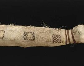 Phát hiện xác ướp mèo kỳ lạ hàng nghìn năm tuổi có 5 chân, 3 đuôi