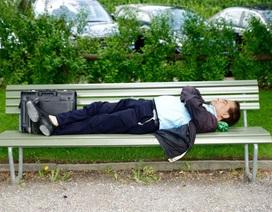 Ngủ có lợi cho… thu nhập cá nhân