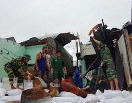 Đang tan hoang sau bão số 5, làng chài lại cuống cuồng chạy bão số 6