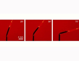 Hoa hướng dương nhân tạo có thể tự uốn cong hướng về phía ánh sáng