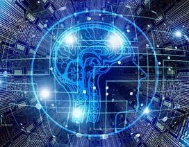 AI Việt: Đầu tư vào các hoạt động bài bản
