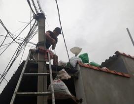 Thêm một người tử nạn khi chằng mái nhà chống bão số 6