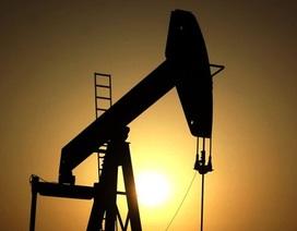 Iran phát hiện mỏ dầu 53 tỷ thùng