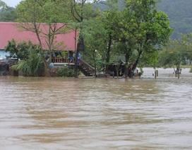 Đắk Lắk: Trên 400 nhà dân và 2.600 héc ta hoa màu bị chìm trong biển nước