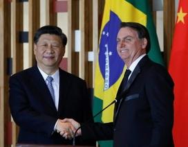 """Rộ tin Trung Quốc đầu tư """"khủng"""" vào cảng Brazil"""