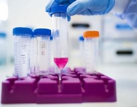 Chủng vi khuẩn ăn thịt  kết hợp với nhau gây nhiễm trùng chết người