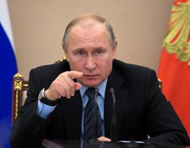 """Tổng thống Putin: """"Hiện diện quân sự của Mỹ tại Syria là bất hợp pháp"""""""