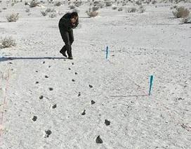 """Kỹ thuật radar mới giúp """"mở khoá"""" bí ẩn dấu chân hóa thạch có từ thời Kỷ băng hà"""
