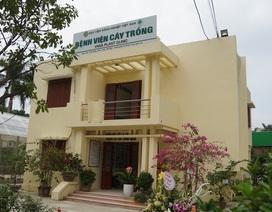 Khai trương bệnh viện chữa bệnh và chăm sóc sức khỏe cho cây trồng
