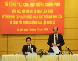 """""""Không thể để Việt Nam trở thành điểm trung chuyển hàng hóa gian lận"""""""
