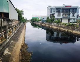 """Sông Đoan Túc bị """"bức tử"""", gần 2.000 dân khốn khổ """"trốn"""" ô nhiễm"""