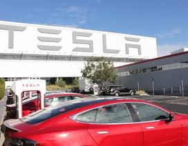 Tesla mở nhà máy ô tô thứ 4, chọn Đức làm điểm dừng chân
