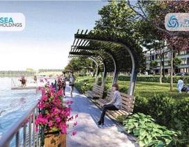 The Pearl Riverside - Khu đô thị mang phong cách Singapore tại Bến Lức