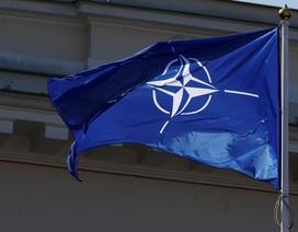 """Hội nghị Ngoại trưởng NATO: Giải quyết hoài nghi """"NATO đang chết não""""?"""