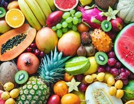 Bệnh nhân ung thư nên ăn loại trái cây nào