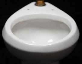 Công nghệ lớp phủ thiết bị vệ sinh mới giúp tiết kiệm nước trên toàn thế giới