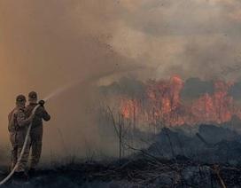 Cơn thèm ăn của người Trung Quốc đang giết chết lá phổi xanh của thế giới -Amazon?
