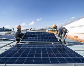 Đấu thầu giá điện mặt trời: Chia sẻ rủi ro để tìm giá thấp?