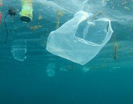 Doanh nghiệp Việt đặt mục tiêu mỗi năm giảm 300 tấn rác nhựa dùng một lần
