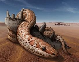 Phát hiện hóa thạch rắn cổ đại có… chân